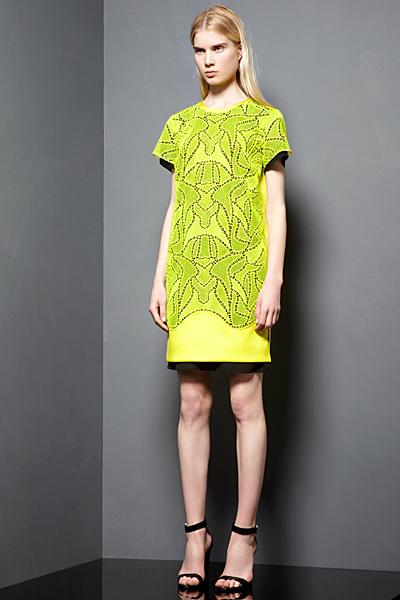 Proenza Schouler - Ready-to-Wear - 2013 Pre-Spring